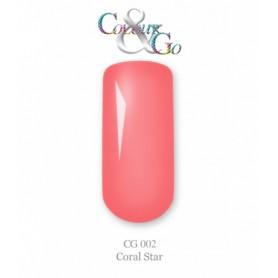 Colour&Go 02 5g