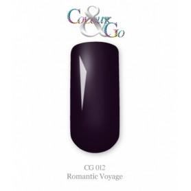 Colour&Go 12 5g
